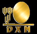 logo-dnx